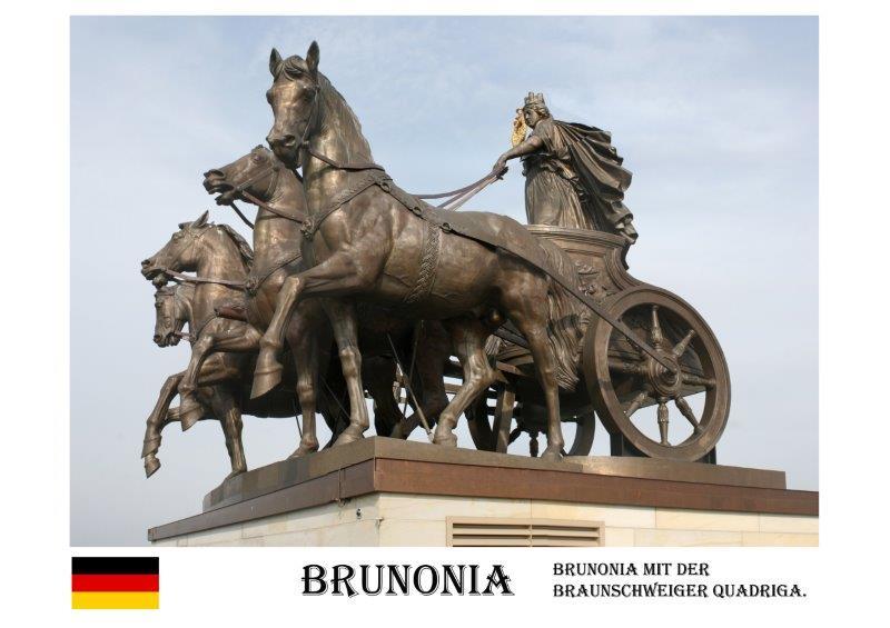 Brunonia